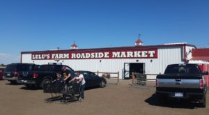 This Enormous Roadside Farmers Market In Colorado Is Too Good To Pass Up