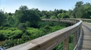 Virginia's Newest Boardwalk Trail Will Take You On A Scenic Creekside Adventure
