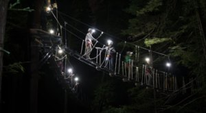The Moonlight Adventure Course In Northern California You'll Want To Experience For Yourself