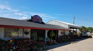 This Enormous Roadside Farmers Market Near Cincinnati Is Too Good To Pass Up