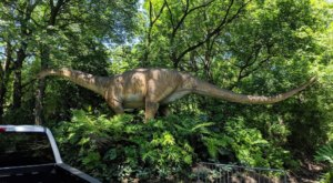There's A Dinosaur Safari Hiding In This New York Zoo That Will Make You Feel Like You've Traveled Back In Time