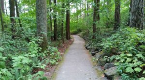 The One-Mile Stroll Through This Oregon Park Is An Easy Peasy Adventure