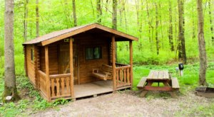 Your Family Will Never Want To Leave This Fantastic Campground In Connecticut