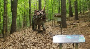 Walk With The Dinosaurs At This Prehistoric Park In New York