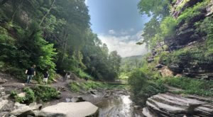 The Hike To This Pretty Little West Virginia Waterfall Is Short And Sweet