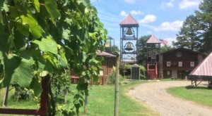 There's No Place Better To Relax In Arkansas Than At This Vineyard B&B
