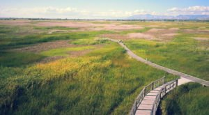This Utah Park Has Endless Boardwalks And You'll Want To Explore Them All