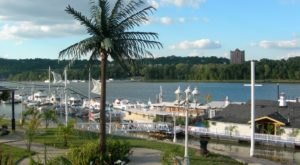 Dine In A Tropical Wonderland At Kentucky's Most Colorful Waterfront Restaurant