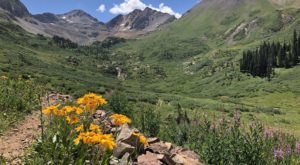 This Colorado Trail Is Brimming With Wildflowers And Now Is The Best Time To Hike It