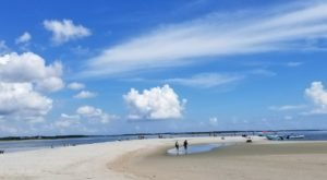 This Little Known Island In North Carolina Is Perfect For Finding Loads Of Sand Dollars