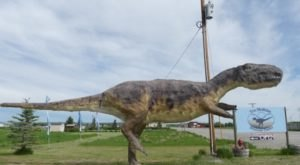 Dig For Ancient Fossils At This Little-Known Dinosaur Park In Montana
