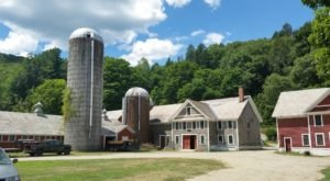 You'll Love Visiting This Vermont Farm Where You Can Pet All The Animals
