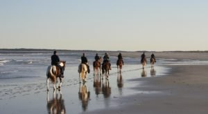 Take This One-Of-A-Kind Horseback Riding Tour Along This Florida Island