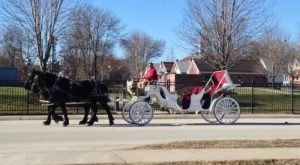Take A Carriage Ride Through Wine Country For A Truly Unique Missouri Experience