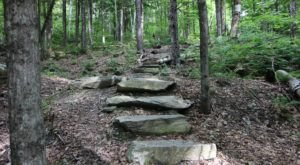 Hike This Stairway To Nowhere In Vermont For A Magical Woodland Adventure