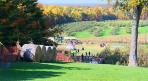 Enjoy A Hillside Slide, Pumpkin Picking, And More All At Mapleside Farms Near Cleveland