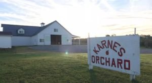 The Fresh Apple Cider From Karnes Orchard Near Cincinnati Is Very Refreshing