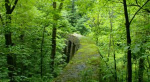 The West Virginia Forest Trail That Leads You To An Abandoned Dam Is Quite The Adventure