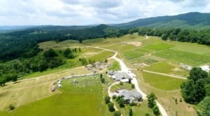 Sip Wine And Enjoy Homemade Pizza At This Picture-Perfect Mountain Vineyard In Virginia