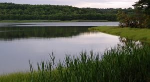These 6 Lakes In Maine Are At Highest Risk For Toxic Blue-Green Algae