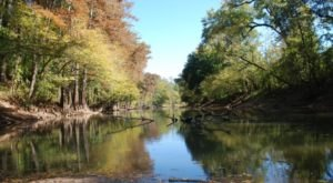 The Oldest State Park In Louisiana Will Make You Feel A Thousand Miles Away From It All