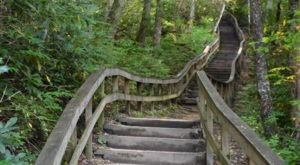 Hike This Stairway To Nowhere In North Carolina For A Magical Woodland Adventure