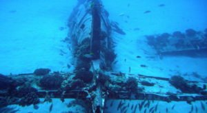 Discover A Slice Of History At The Underwater Corsair Plane Wreck In Hawaii