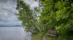 This Hidden Gem Forest In Minnesota Is Home To 1,300 Lakes