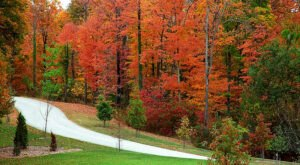 The Best Times And Places To View Fall Foliage In Ohio