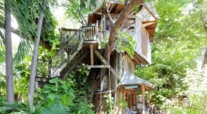 Spend The Night In A Private Treehouse In This Lush Urban Oasis In Florida