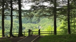 Cold Run Loop Trail Is A Waterfall Hike In Pennsylvania With Sweeping Canyon Views