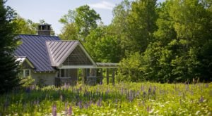 The Most Relaxing Spa In Vermont Is Tucked Away On Acres And Acres Of Wildflowers