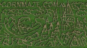Walk Through A Magical Harry Potter Corn Maze This Fall, At Sunrise Farm In Maryland