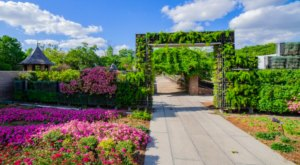 This Beautiful 12-Acre Botanical Garden In New Orleans Is A Sight To Be Seen