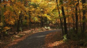 You'll Want To Take This Gorgeous Fall Foliage Road Trip Around Nashville This Year
