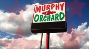 Missouri's Murphy Orchard Has 14 Delicious Apple Varieties Prime For The Picking