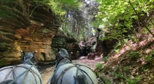 Take This Horse Drawn Carriage Ride Through A Wisconsin Canyon For A Wonderful, Scenic Experience