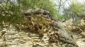 The Unique Rock Formation At Pine Hills Nature Preserve In Indiana That Looks Like A Honeycomb