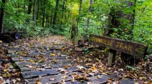 Wesselman Woods In Indiana Is A Diverse Paradise Of Natural Sites