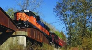 The Pumpkin Patch Train Ride Near Cincinnati That's Perfect For A Fall Day