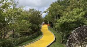 Take A Stroll On The Yellow Brick Road At This Wizard Of Oz Festival In North Carolina