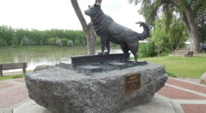 Montana's Dog Memorial Is A Moving Monument to Man's Best Friend