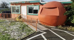 This Wacky Little Restaurant In Northern California May Look Strange But It's An Awesome Place To Dine