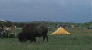This May Just Be The Most Primitive Campground In All Of South Dakota