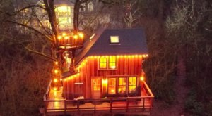 There's A Spectacular Treehouse Outside Redmond, Washington, Where You Can Stay Overnight