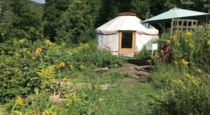 Spend The Night In A Unique Yurt Campground In Vermont