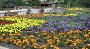 Visit North Dakota's Dazzling International Peace Garden While It's Still In Bloom