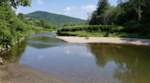 Your New Favorite Swimming Hole In Vermont Might Just Be Lareau Park