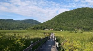 West Rutland Marsh Boardwalk Hike In Vermont Leads To Incredibly Scenic Views