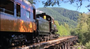 Admire Washington's Fall Foliage And Sip Craft Beer On Mt. Rainier's Rails To Ales Train Ride